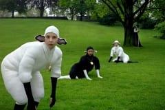 Les_moutons