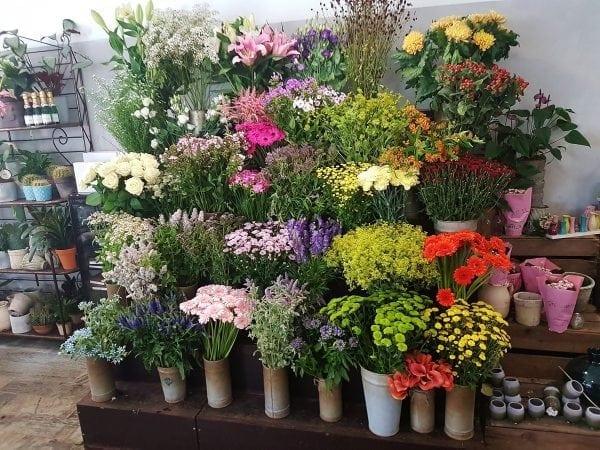 Blomsterkompagniet åbner efter ferien