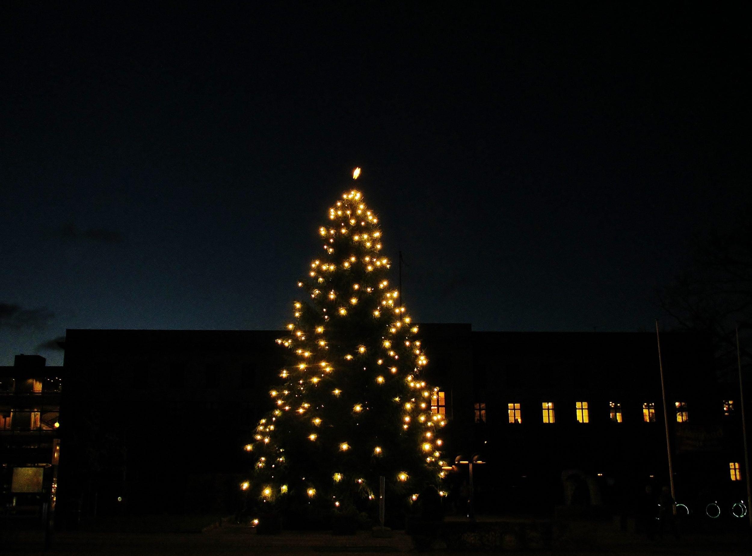 55a99053c429 Juletræet tændes på Rådhuset   Dit Gentofte
