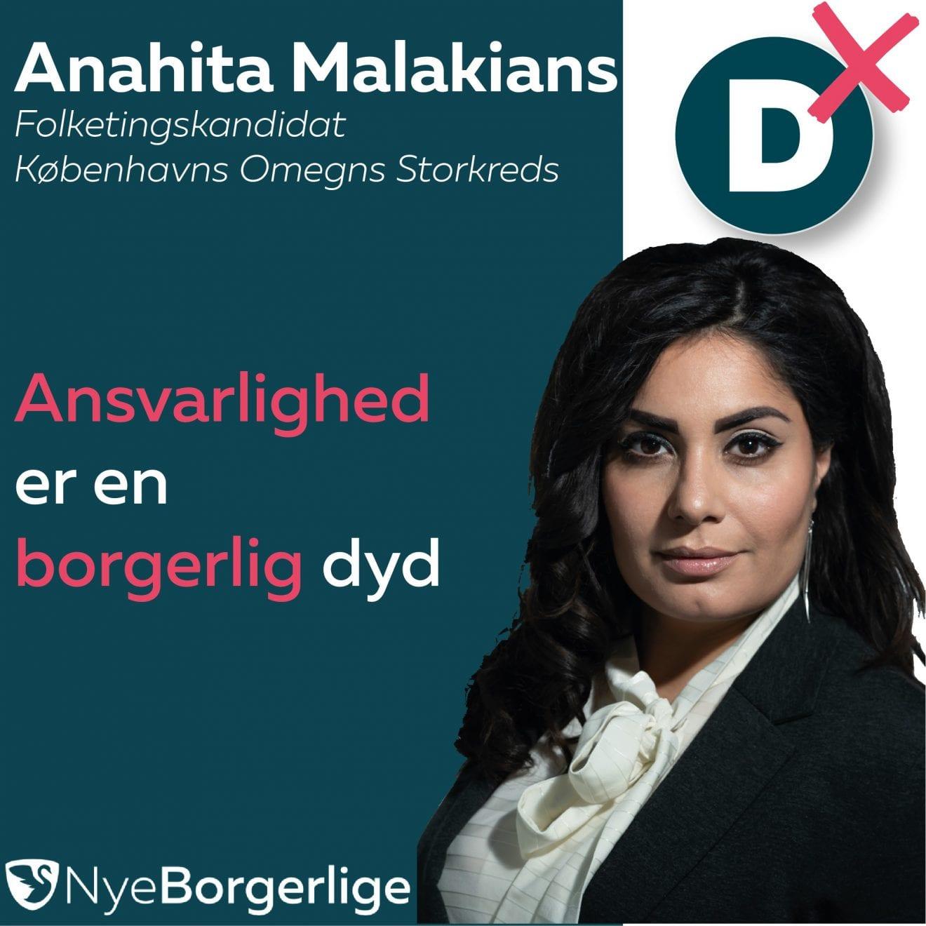 En SV-regering vil forhindre enhver udvikling i Danmark