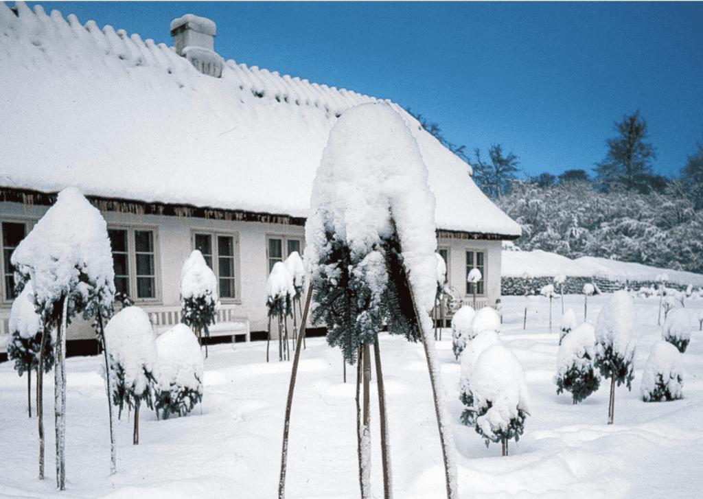 Jul i Tehuset