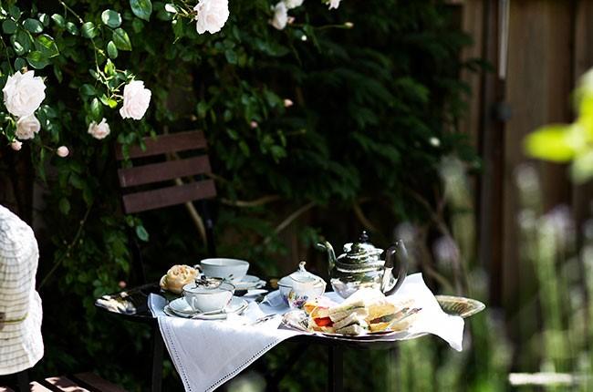 Is-Te og Ny te