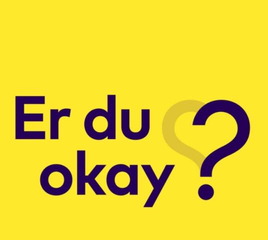 Børn, Unge & Sorg og Psykiatrifonden går sammen om online tilbud til alle pårørende børn og unge i Danmark