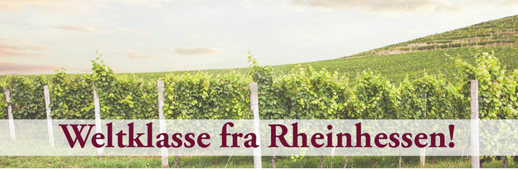 Weltklasse fra Rheinhessen!